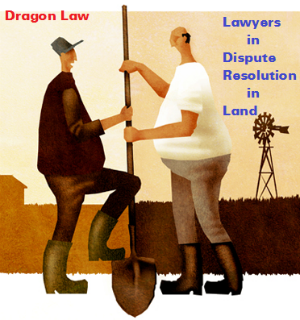 Dragon law-best lawyer in dispute resolution in real estate