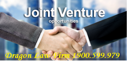 Overview of Joint Venture Enterprise