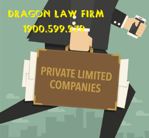 Dragon Law Firm - Private Enterprise Registration Procedures